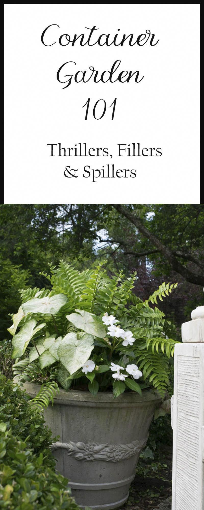 The basics of container gardening Thrillers Fillers and Spillers Lists of suggested plants and plant combination recipes and examples