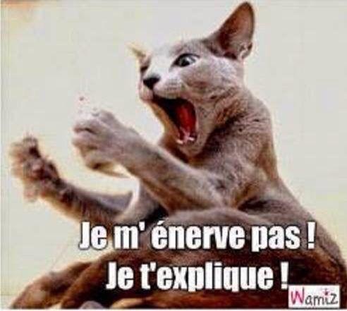 Je m'enerve pas !   Humour-France   Pinterest   Énervé