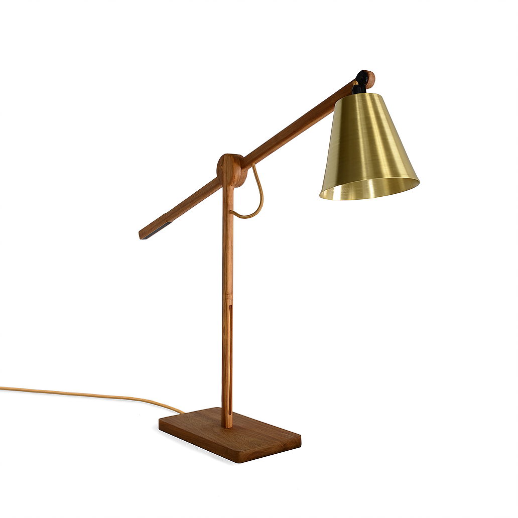 Table Top Lure Lamp By David Krynauw Mimic Consulting African