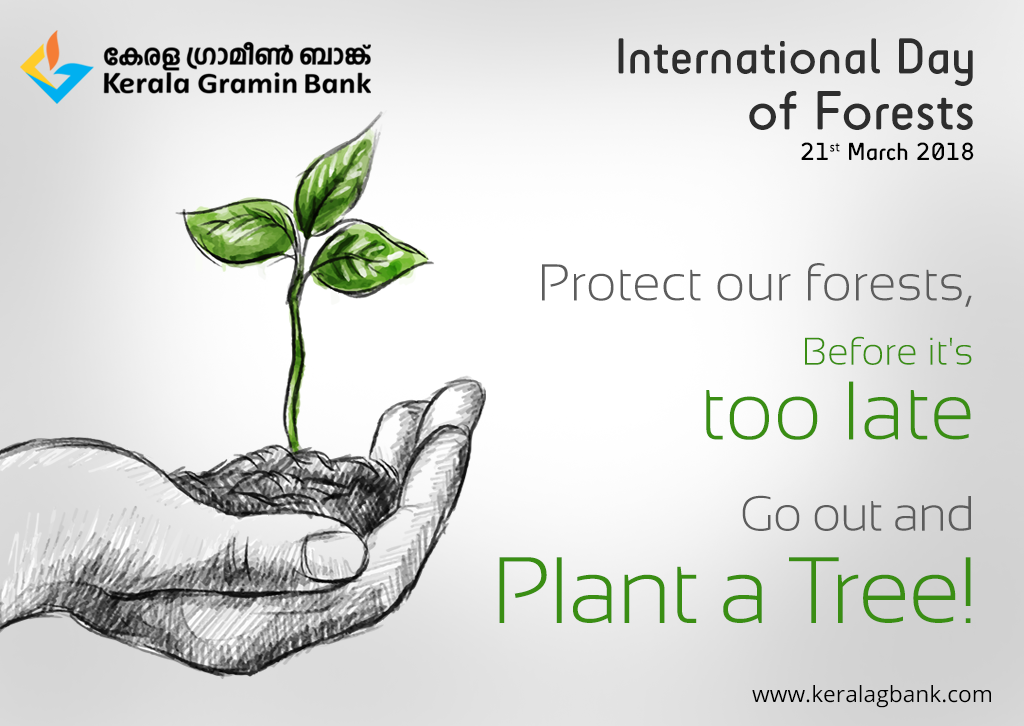 Protect Our Forests Before It S Too Late Go Out And Plant A Tree
