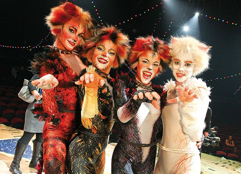 Cats Cats The Musical Costume Jellicle Cats Cats Musical