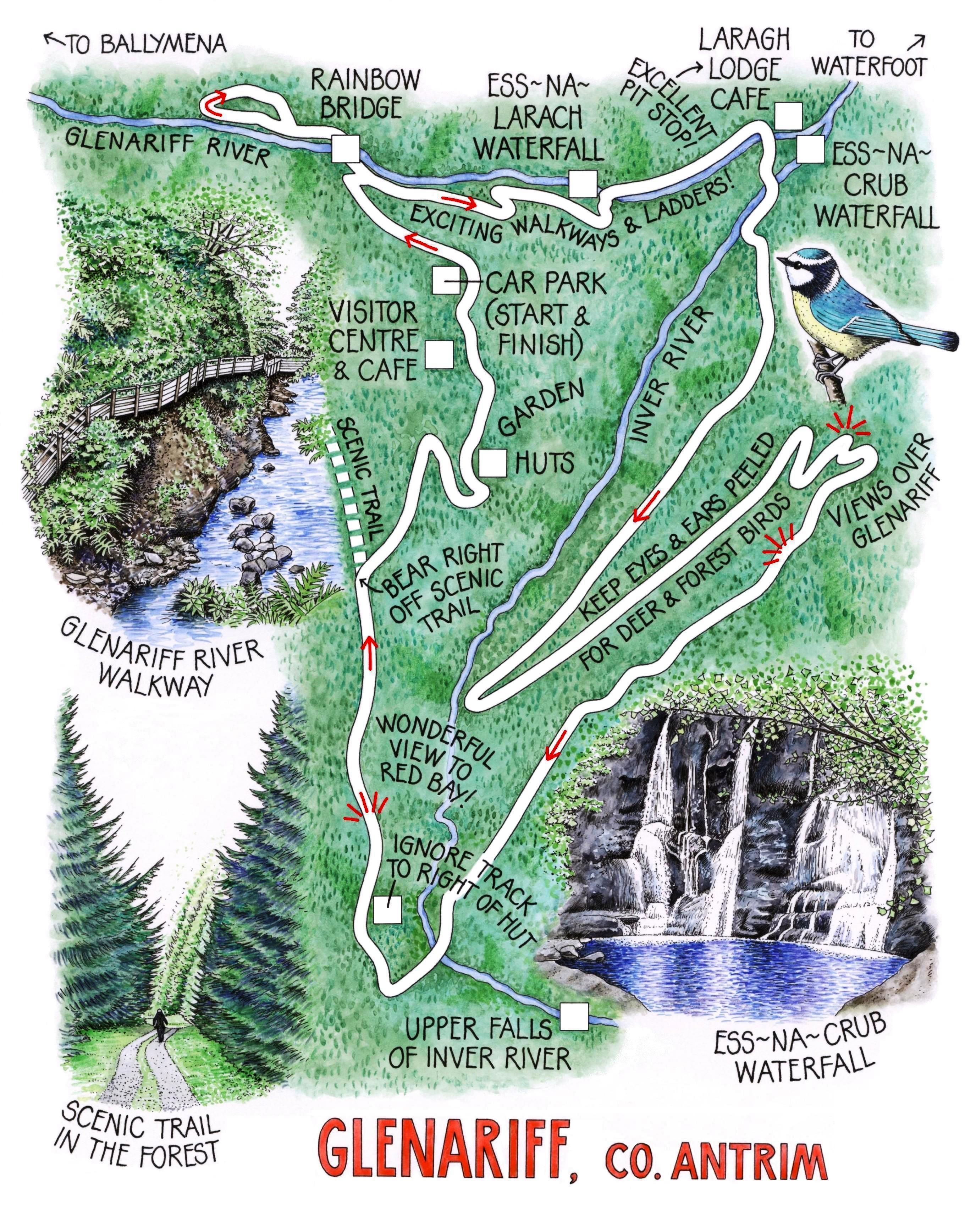 glenariff forest park - Google Search | Erin go Bragh