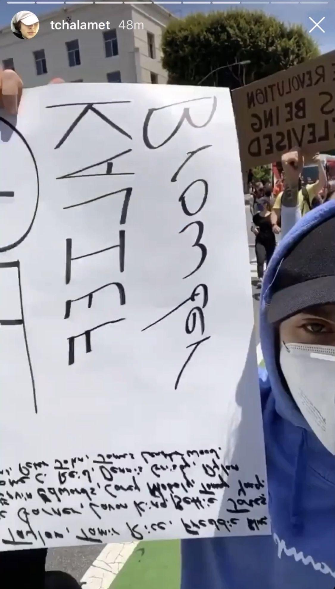 Timmy Protesting Timothee Chalamet Blm Black Lives Matter