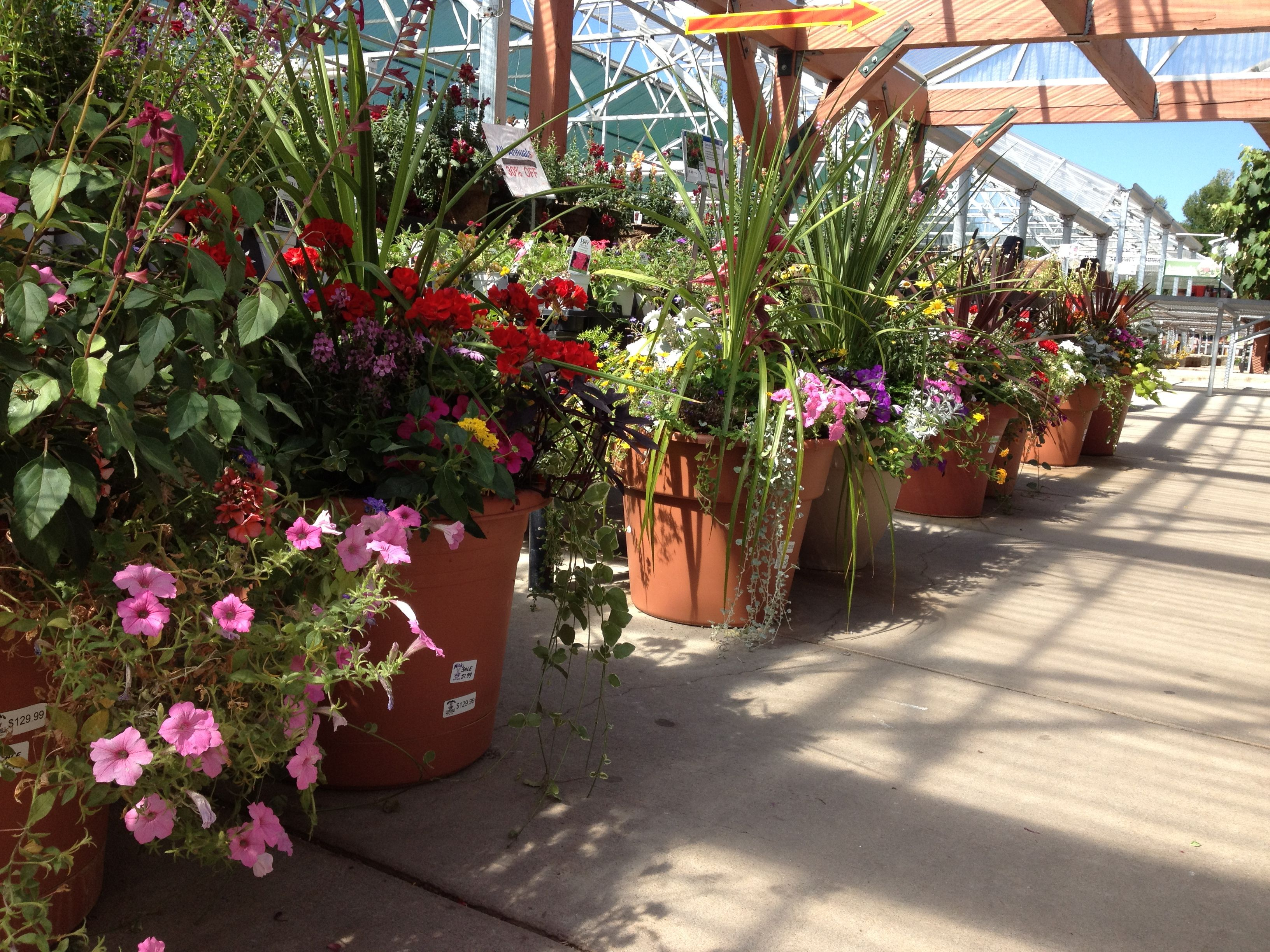 Delicieux Ready Made Large And Small Flower Pots For Patios And Walkways,