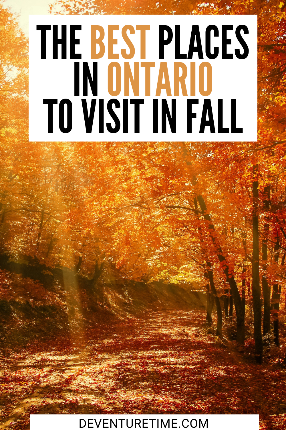 The Best Places To Visit In Ontario Canada During Fall Canada Travel Places To Visit Ontario Travel