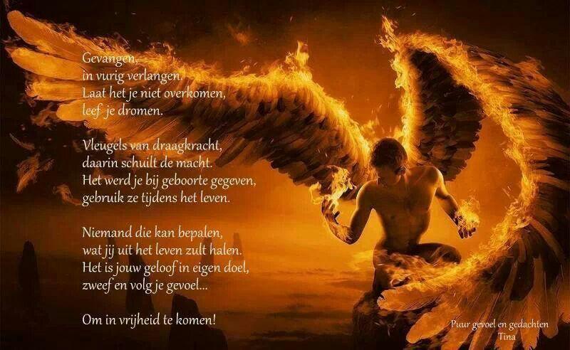 Citaten Over God : Plaatje past er goed bij gedichten