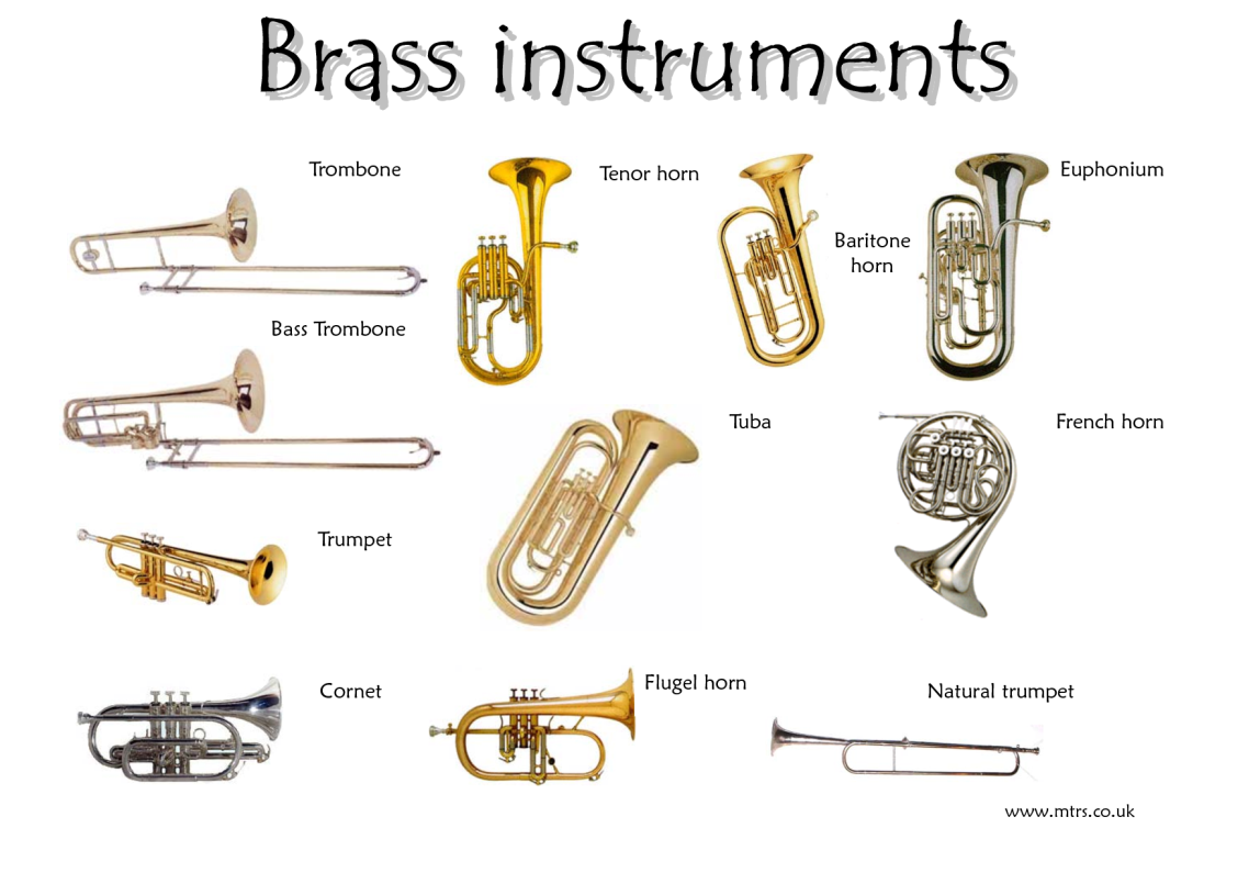 Introduction To The Instruments Brass Videos