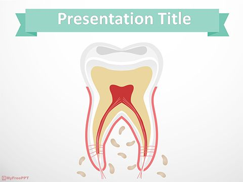 Download Ready to Use Free Tooth Anatomy PowerPoint Template - sample medical powerpoint template