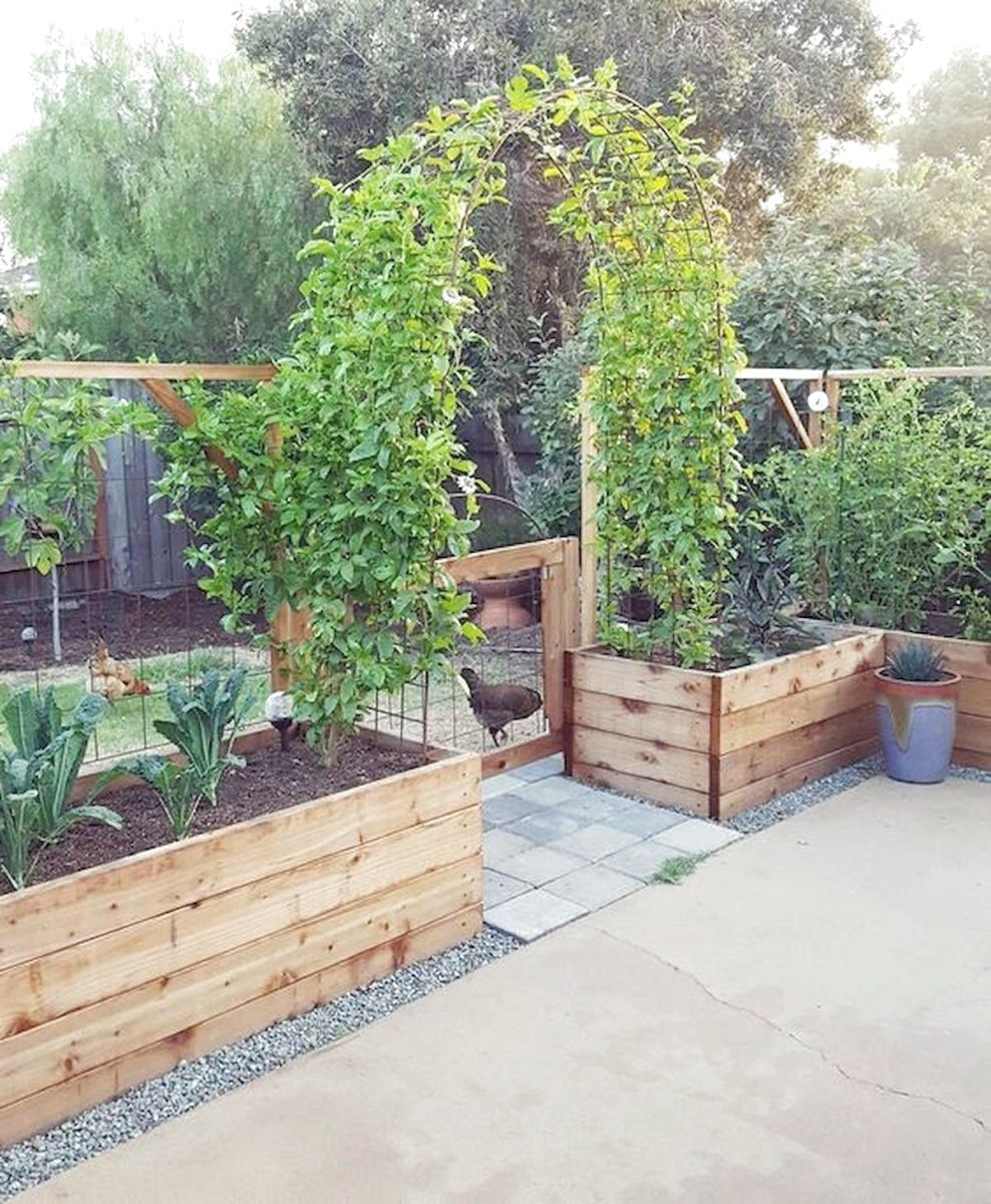 56 Very Beautiful Backyard Vegetable Garden Designs Ideas