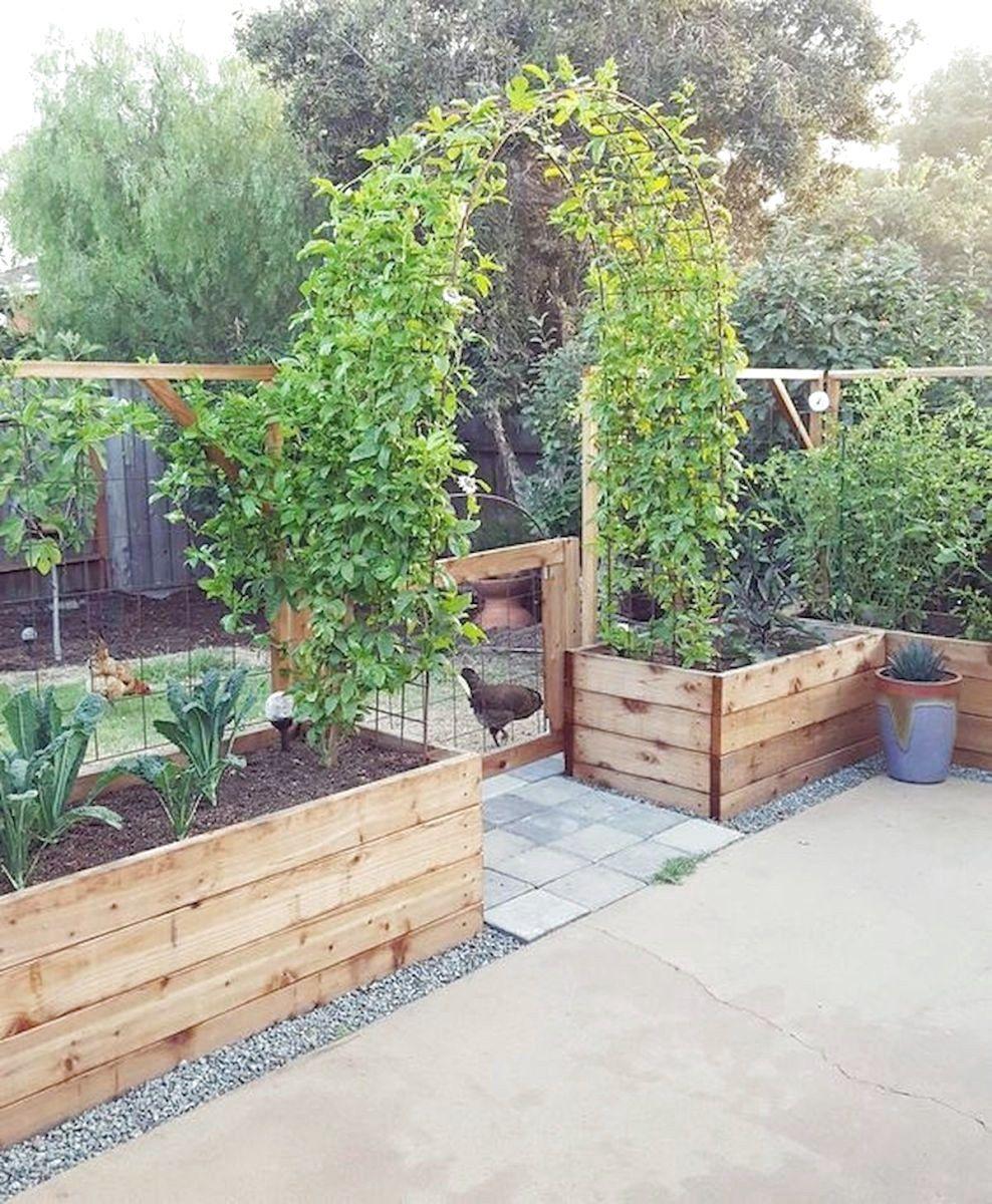 56 Very Beautiful Backyard Vegetable Garden Designs Ideas ...