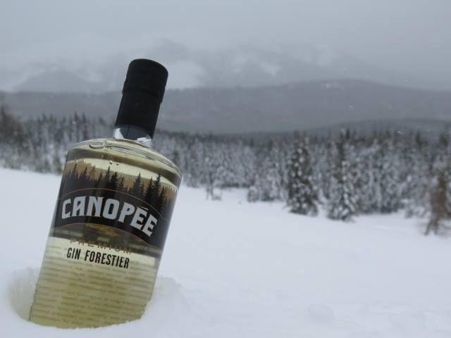 Canopee Gin Forestier Distillerie Mariana Louisville Quebec