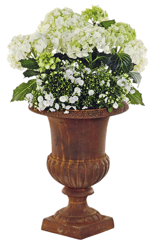 fleurs dans vase vases m dicis pinterest vase et. Black Bedroom Furniture Sets. Home Design Ideas