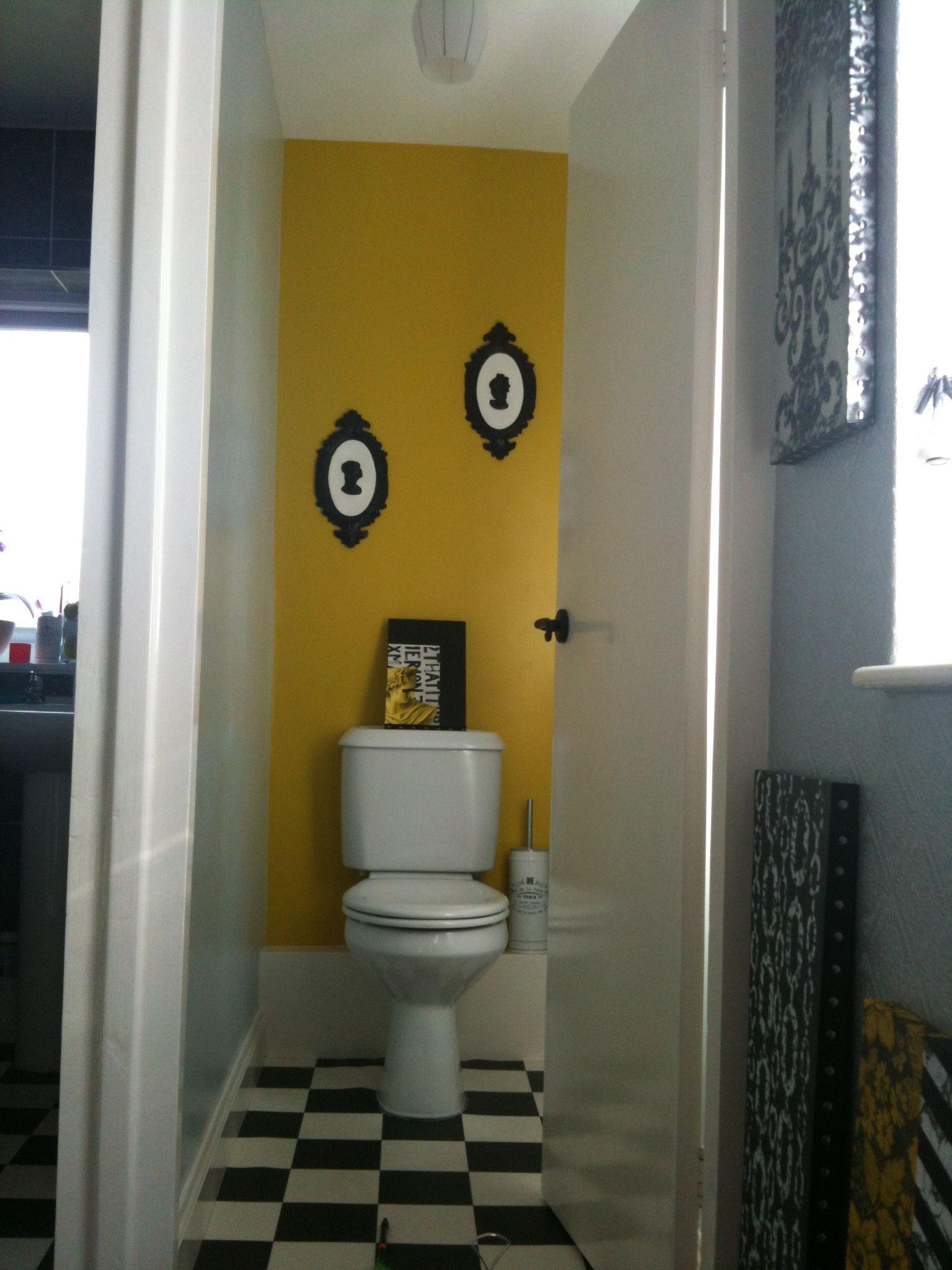Delhi Bazaar Dulux Paint Small Toilet Room Yellow