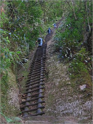 """Putucusi, the """"hike"""" that brings you up adjacent to Machu Picchu.  This ladder is probably 5 stories high."""