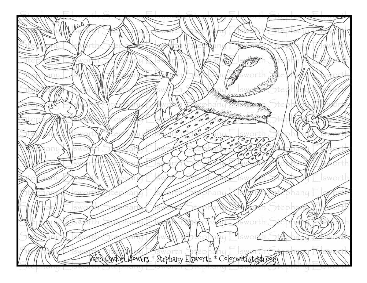 Barn Owl In Flowers Free Printable Coloring Page Coloring Pages
