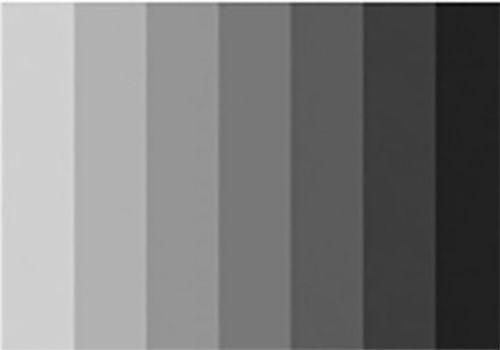 Image Result For Gray Color Palette