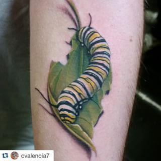 Caterpillar Tattoos Google Search Caterpillar Tattoo Inspirational Tattoos Tattoos