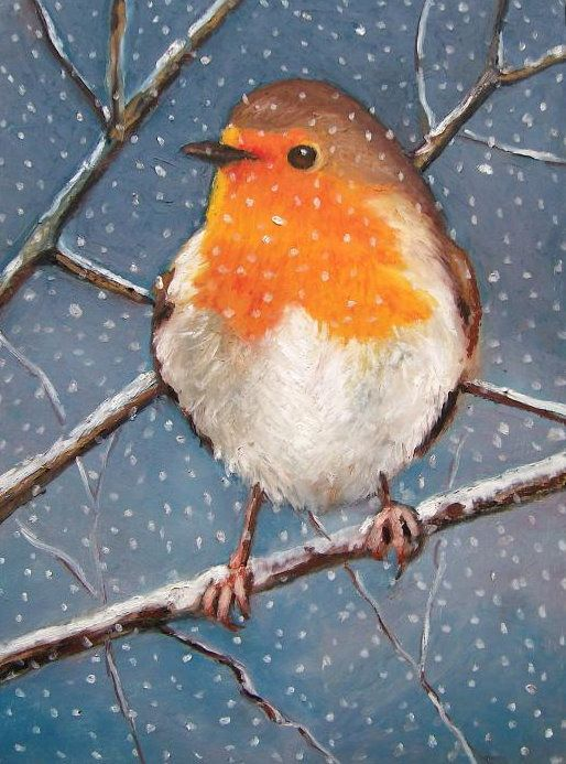 Yellow throated robin in the snow