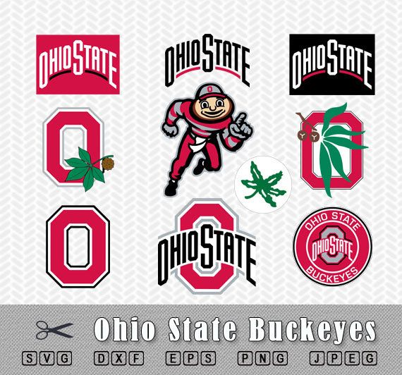 Ohio State Buckeyes Logo in SVG, DXF, EPS, PNG and JPEG