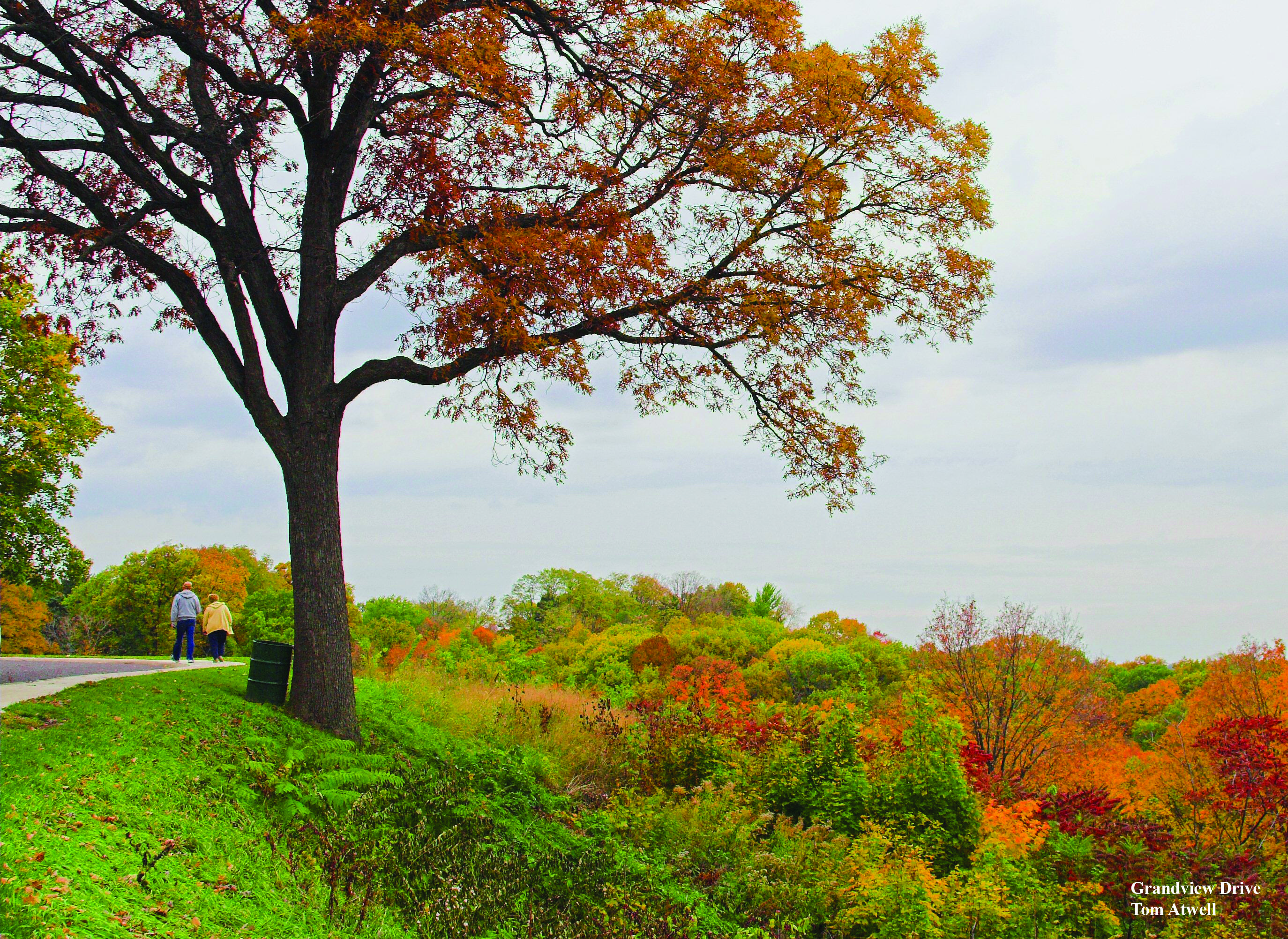 Grandview Drive Peoria Il This Time Of Year I Really Miss Home Peoria Illinois Peoria Hometown