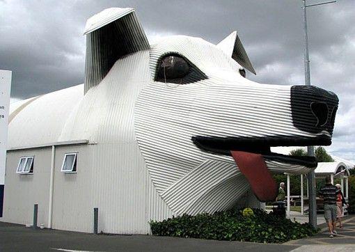 Interesting Buildings Sheep Dog House New Zeland Unusual