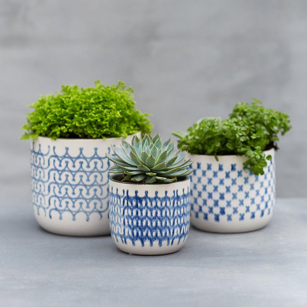 Nordic Print Ceramic Pot In Garden Indoor Planters At Terrain