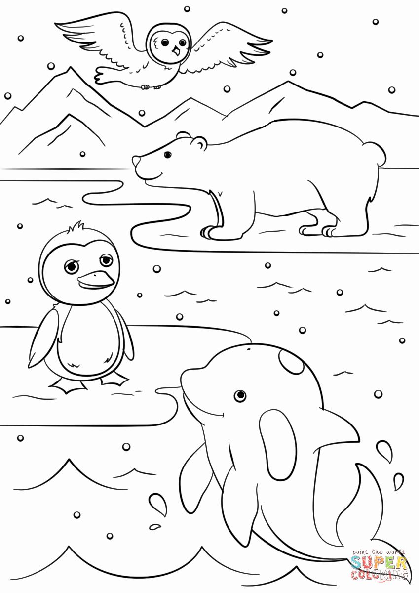 Winter Coloring Sheets Printable Awesome Winter Animals