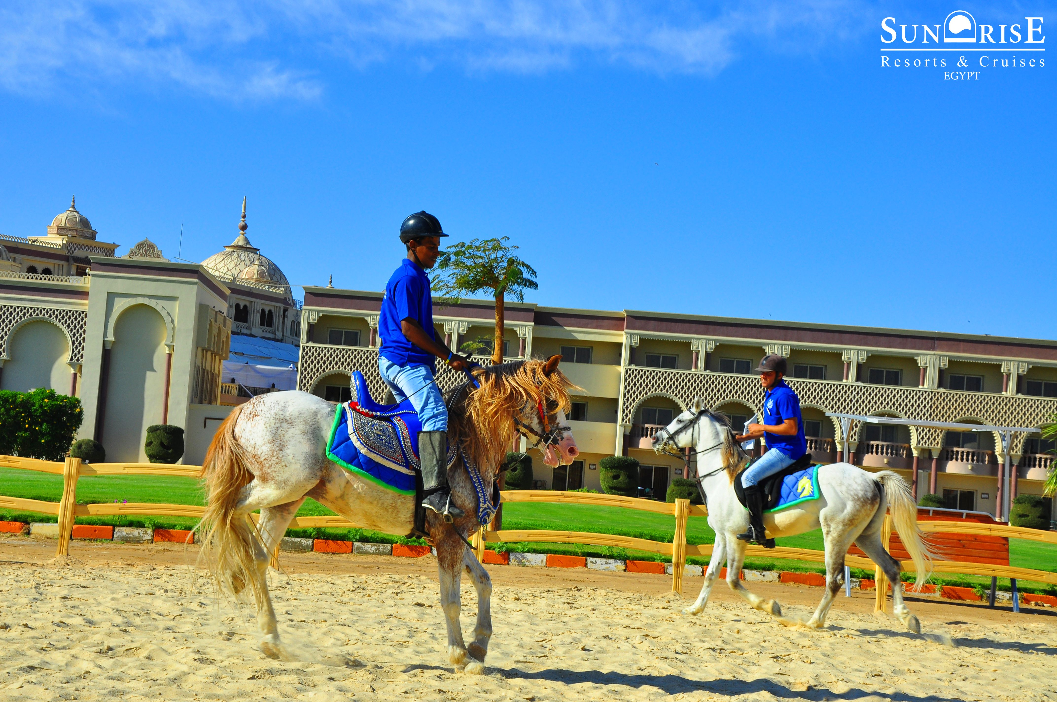 To Ride On A Horse Is To Fly Without Wings Sunrise Garden Beach Resort Select Sentido Mamlouk Palace Resort Sunriseresortsandc Sunrise Resort Horses Resort