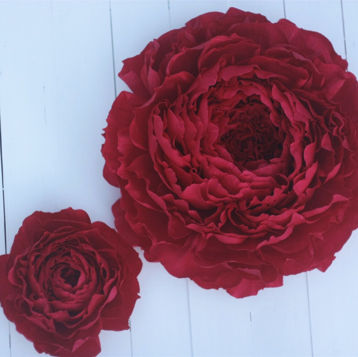 Our luxuriant red paper flowers.