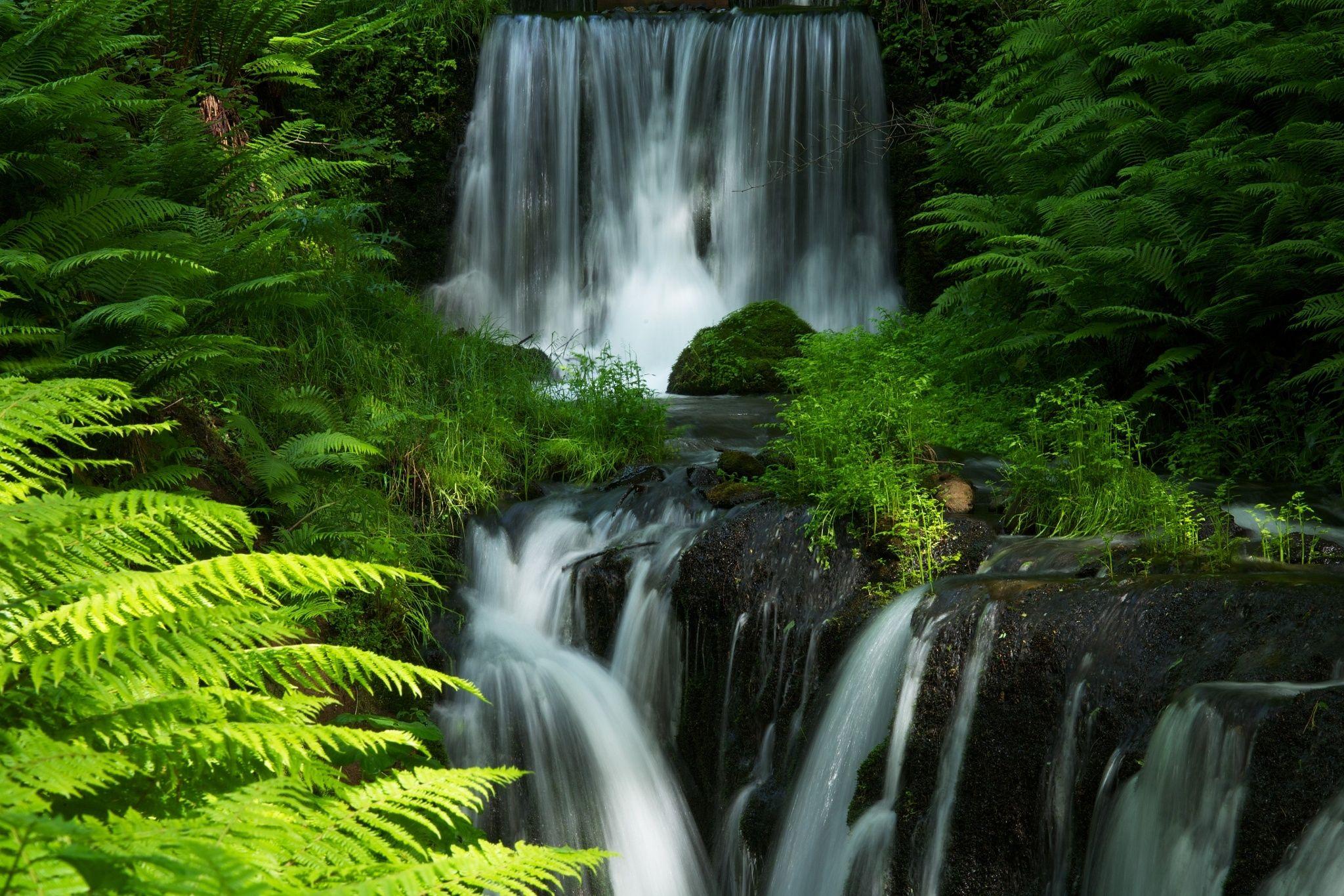 Fresh green and Waterfall by Tsuguharu Hosoya on 500px.
