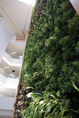indoor biowall plant list | Drexel University