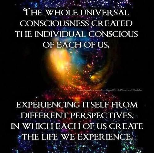 Conscious Quotes Endearing Universal Consciousness Quote 2Consciousness Quotes On