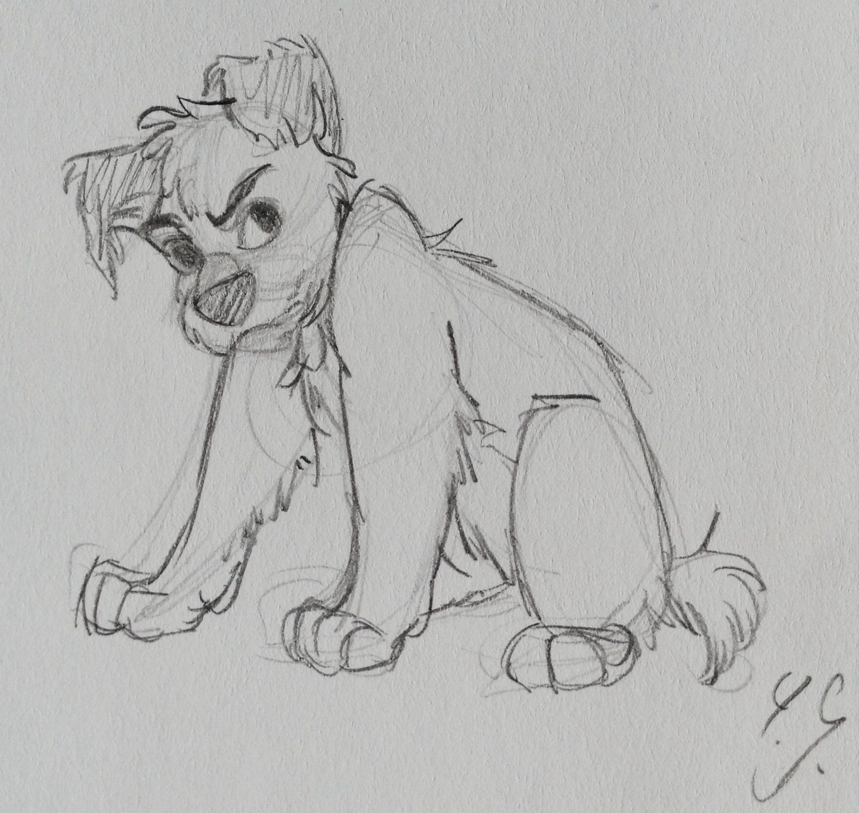 Drawing of a dog by yenthe joline my sketchbook pinterest