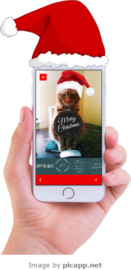 Put a picture with your cat on the latest device frame