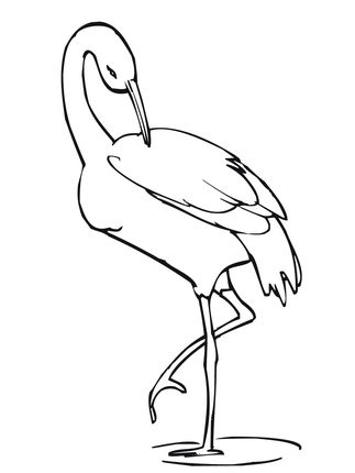 Click To See Printable Version Of Crane Stands On One Leg Coloring
