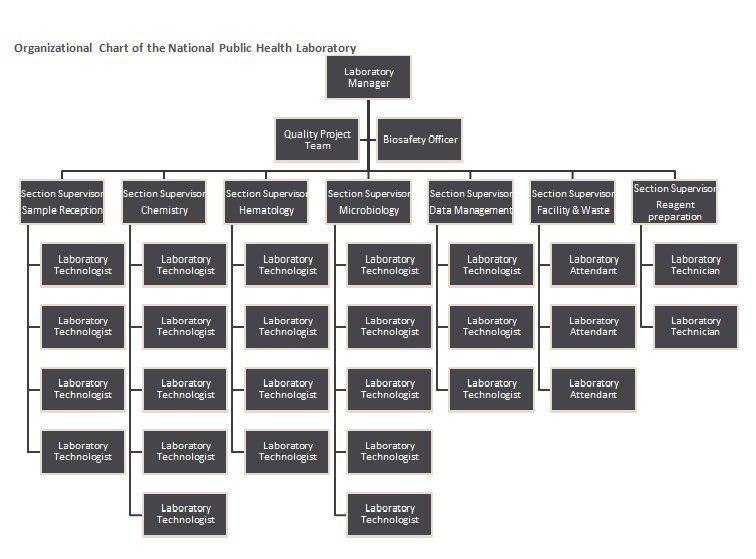 Organizational Chart Template 10 Food Pinterest Template - biosafety officer sample resume