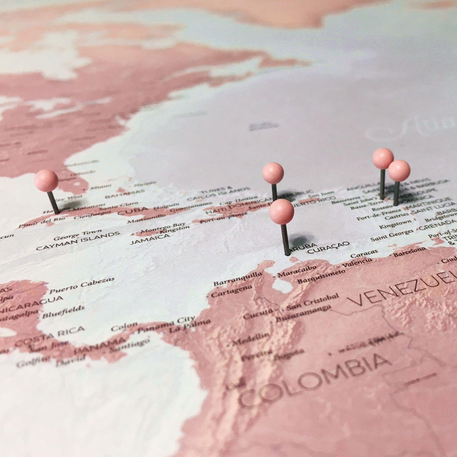 Blush push pin map designed pinterest viajes quisiera ser y metas dusty rose world map elegant in white glows in gold or add a gumiabroncs Images