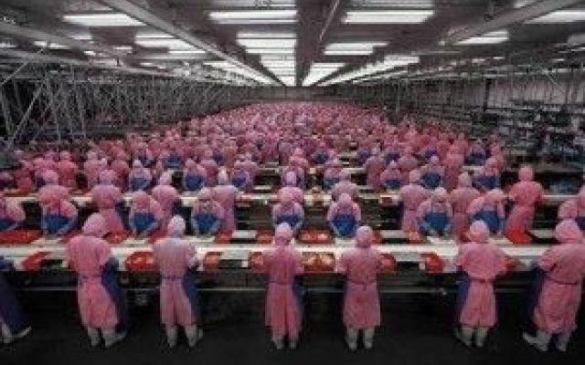 Cina:I robot prendono sempre più il sopravvento I robot stanno soppiantando gli esseri umani... Gli operai sono destinati a scomparire vista la tendenza a robotizzare le attività, ma alcuni esemplari potrebbero essere salvati, magari collocandoli  #cina #umanità #robot #operai