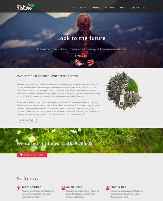 This charity and nonprofit WordPress theme comes with