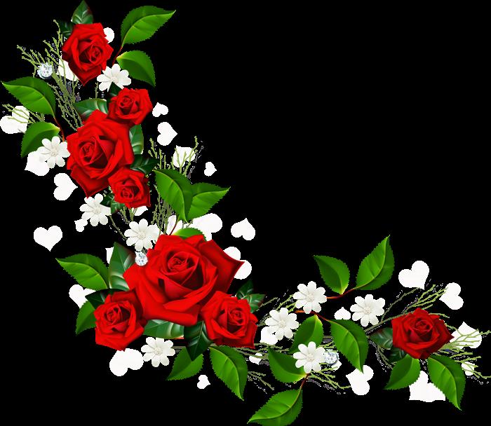 Flores Gif Animados Buscar Con Google Laminas De Flores Marcos Para Fotos De Boda Flores Victorianas