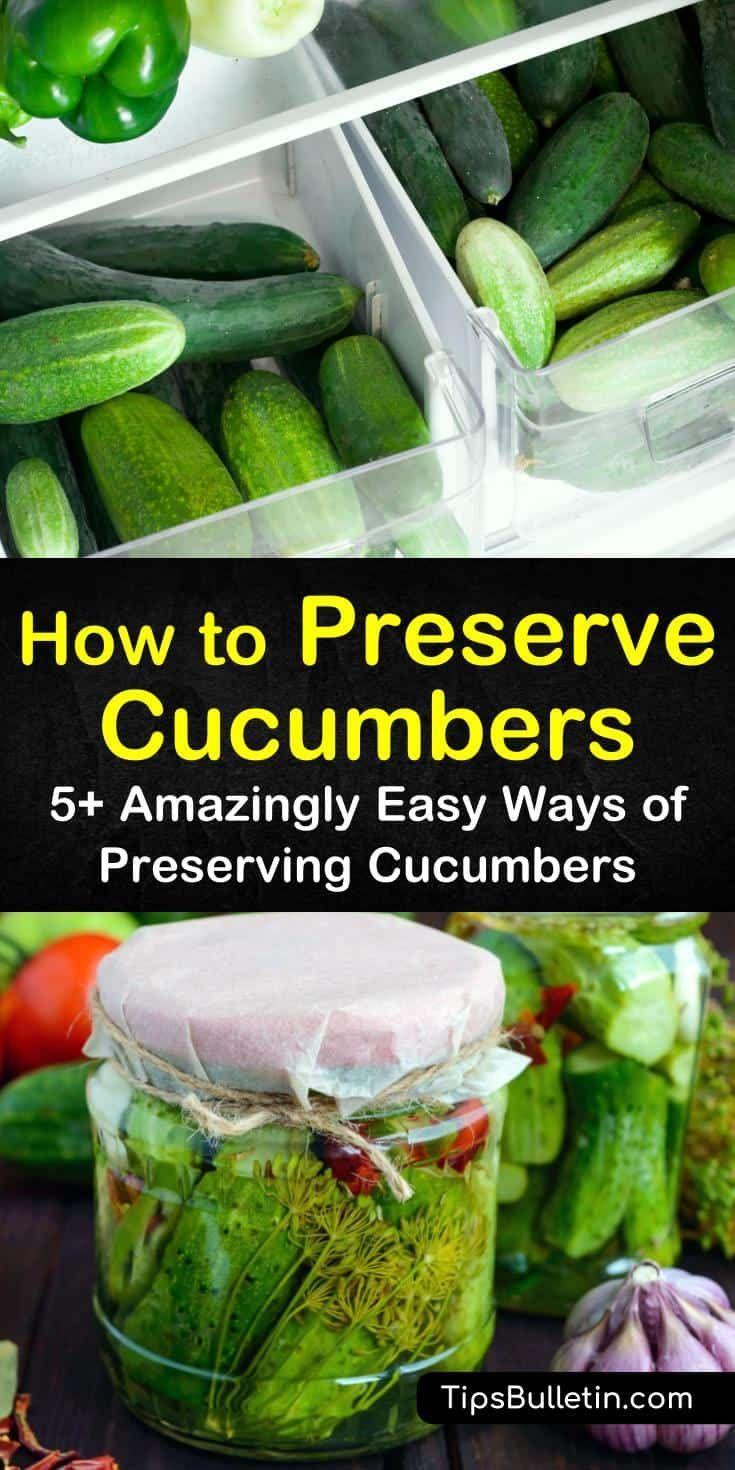 How to Preserve Cucumbers - Amazingly Easy Ways of Preserving Cucumbers -   19 cucumber recipes ideas