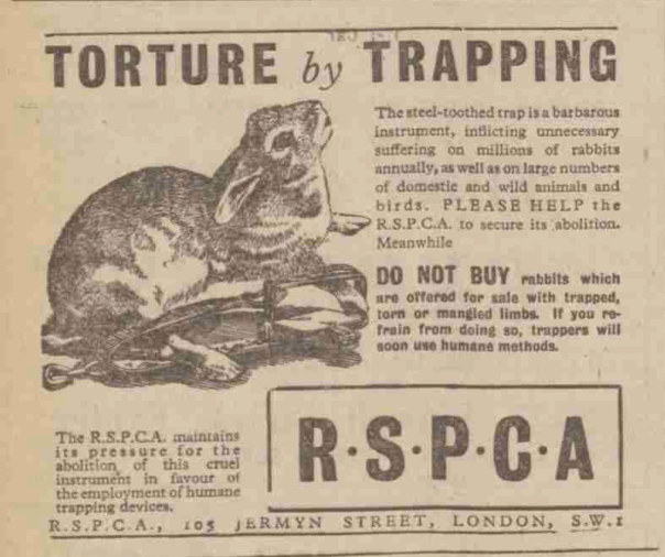 Rspca 20 September 1946 Retro Advertising Presents For Men About Me Blog