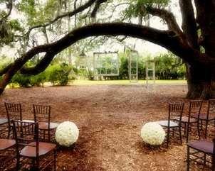 Hilton Hotel Gainesville Fl Florida Wedding Venues Gainesville Florida Wedding Reception Venues