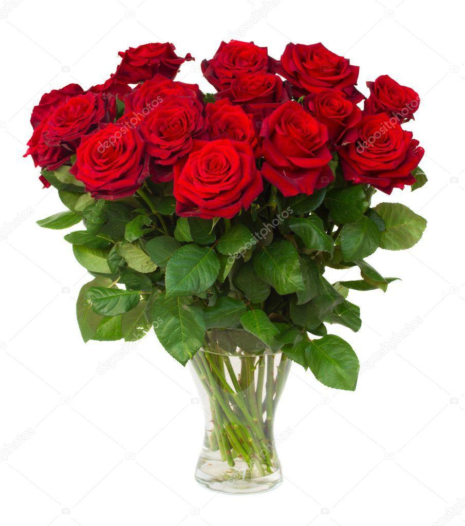 Baixar Buque De Rosas De Vermelhas Escuras Florescimento Em Vaso