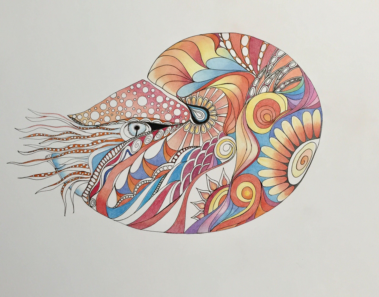 stay magical wall art print.htm zentangle nautilus nautilus art marine art zentangle shell  nautilus art marine art zentangle shell