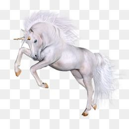 Unicorn Unicorn Clipart Horse Png Transparent Clipart Image And Psd File For Free Download Unicorns Clipart Unicorn Illustration Unicorn Horse