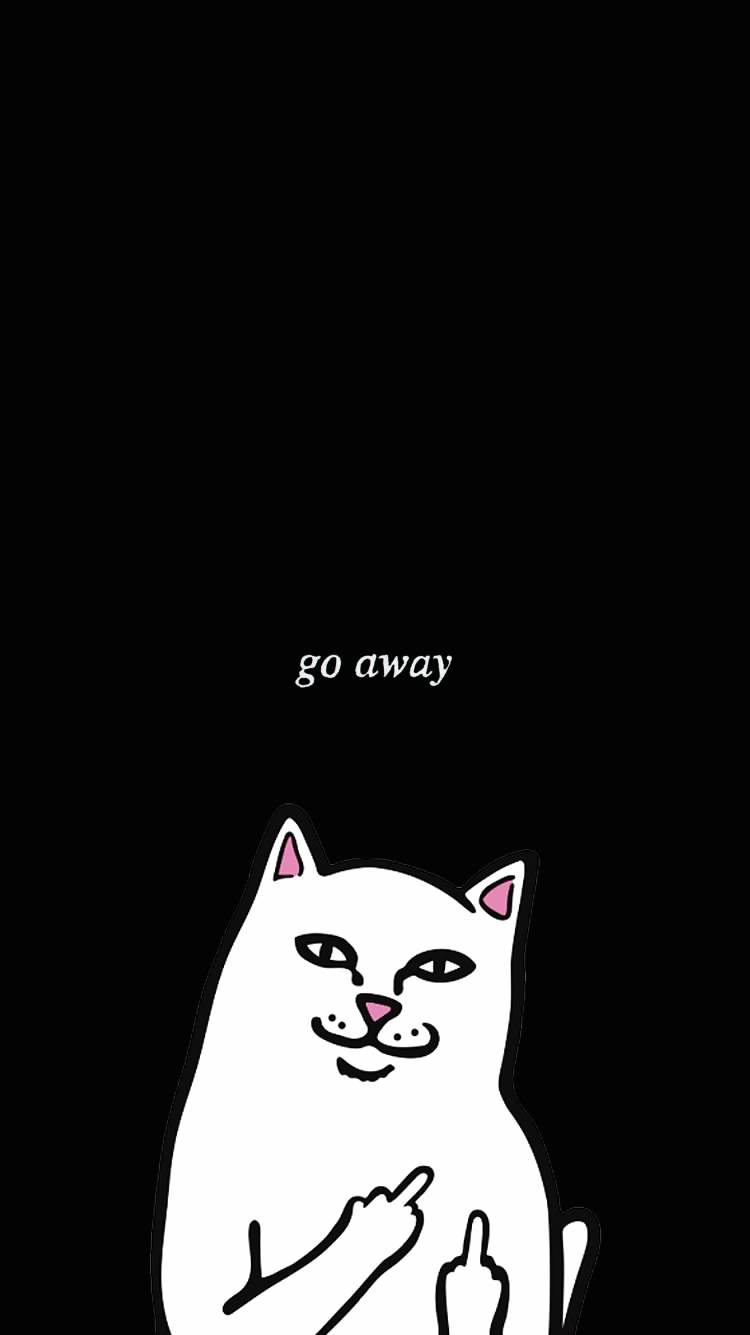 Iphone Wallpaper Funny Iphone Wallpaper Ripndip Wallpaper