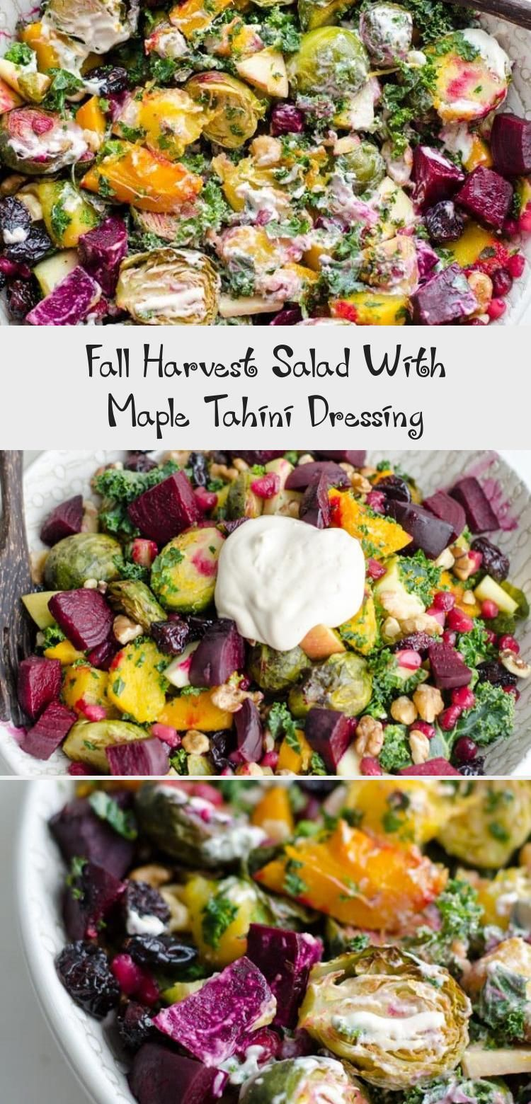 Fall Harvest Salad With Maple Tahini Dressing - Pinokyo