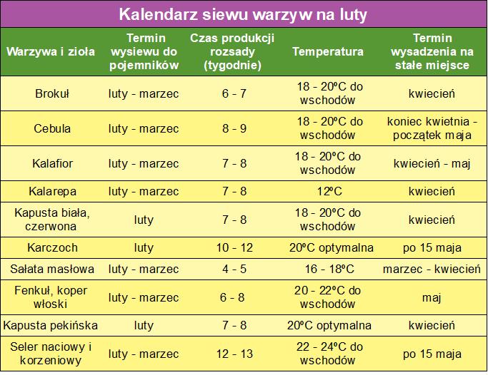 Kalendarz Siewu Warzyw Na Luty Veggie Garden Patio Garden Herb Garden