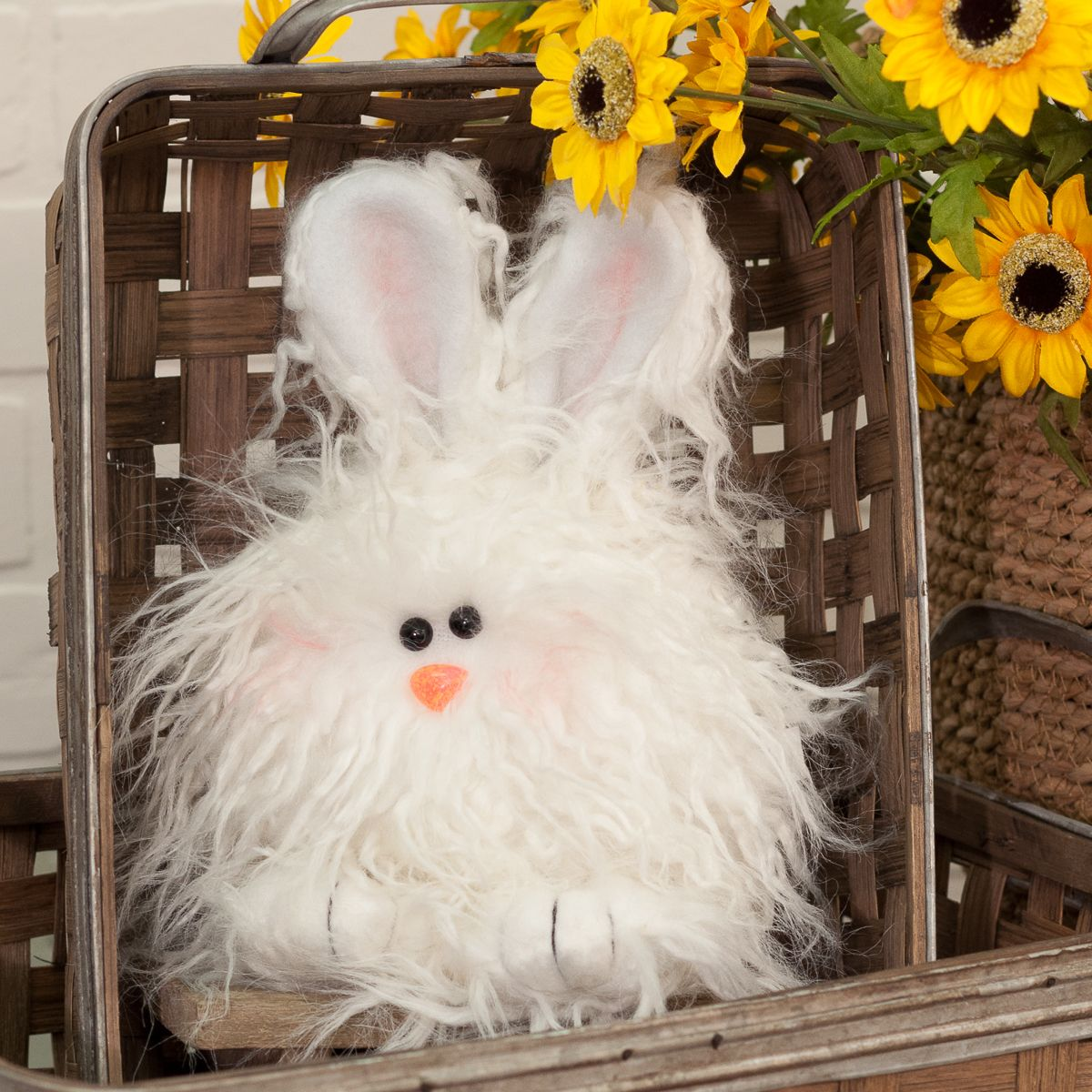 Angora Bunny Angora bunny, Fluffy bunny, Bunny